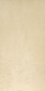 Fashion Beige 30X60
